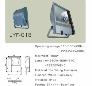 Outdoor Flood Light Housing Fixtures (MH250W/400W E40) pictures & photos