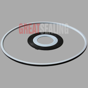 PTFE/EPDM Lid Seal pictures & photos