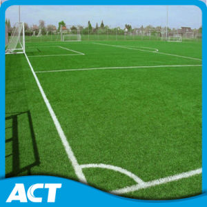 Made in China Football Grass Factory Price Artificial Turf (PD/SF50F8) pictures & photos
