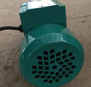Clean Water Pump Qb60 with Aluminium Housing 0.37kw/0.5HP 1inch Outlet pictures & photos