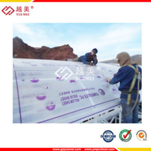 UV Sabic Opal Transparent 10mm 6mm 8mm Crystal Multiwall Polycarbonate Hollow Sheet for Roofing 710 pictures & photos