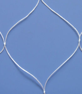 Nylon Silk Net 210d/6r pictures & photos