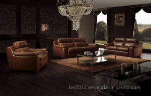 Living Room Genuine Leather Sofa (SBO-3936) pictures & photos