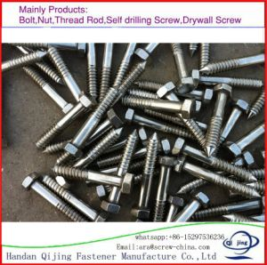 Hex Head Wood Screw, Color Zinc, Made in China. pictures & photos