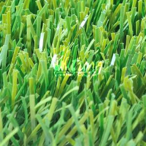 Promoting Garden Grass L34455