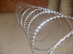 Galvanized Steel Razor Barbed Wire pictures & photos