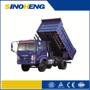 China 3t Light Duty Mini Diesel Dump Truck pictures & photos