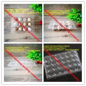 Tansparent Clear Pet Plastic Quail Egg Trays Wholesale pictures & photos