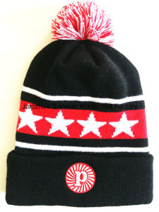 Export to Europe High Quality Embroidery Beanie Hats/Cap pictures & photos