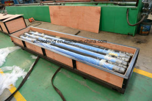 Single Head Screw Pump Well Pump PC Pump Glb Series pictures & photos