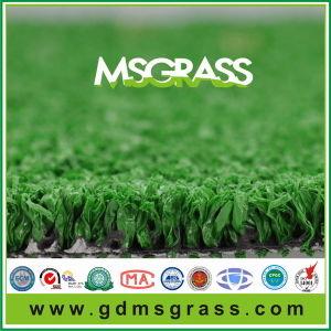 Tennis Sport Cheap Artificial Turf (MSQW-C12D26EM)
