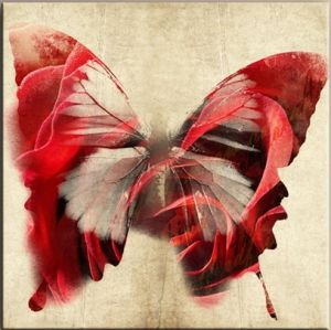 Oil Painting of Butterfly pictures & photos