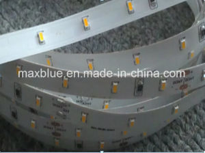 DC12V/24V 3014 Flexible LED Strip (60LEDs/m) pictures & photos