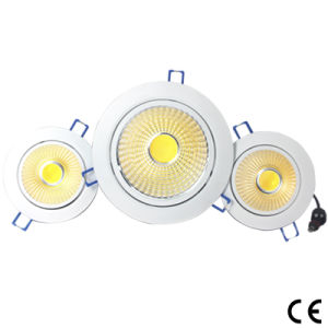 30W COB LED Downlight Factory Price High Quality pictures & photos