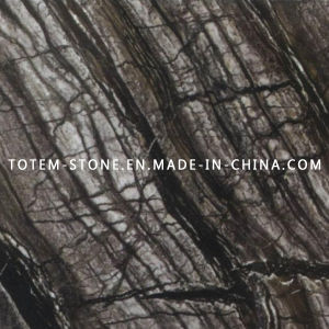 Polished Tree Black Marble Tile for Kitchen Floor and Wall pictures & photos