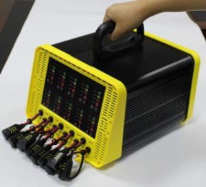 10-Way Battery Charger (NEW) pictures & photos