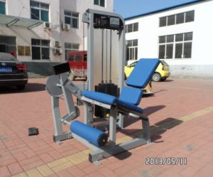 Fitness Equipment/Gym Equipment/Leg Extension pictures & photos