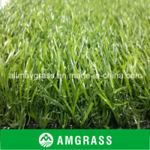 PE Artificial Grass for Leisure Landscape Grass pictures & photos