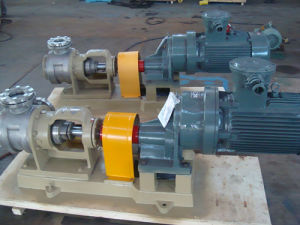 Nyp Stainless Steel Gear Pump pictures & photos