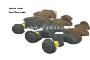 Brazilian Remy Human Hair Weaving Body Wave Ombre Color pictures & photos