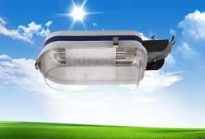 Factory Price Industry Workshop Squares Packing Lot Roadside CFL Outdoor Road Street Light Zd3-B pictures & photos