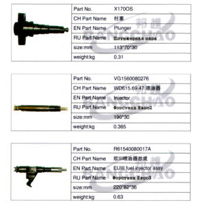 Sinotruck HOWO Shacman Foton Truck Spare Parts Auto Accessory Injector pictures & photos