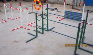 Agility Dog Training Two Hurdles Race With Adjustable Function (GW-DT07) pictures & photos