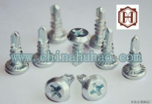Screw/Flat Framing Head Self-Drilling Screw pictures & photos