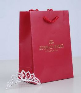 Luxury Paper Bag (HD-SG-J015)