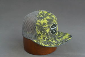 Flat Brim Trucker Hat with Sublimation Printing pictures & photos