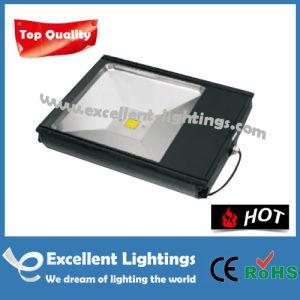 Outdoor Lighting Aluminum Efgd-1003011 LED Outdoor Flood Light
