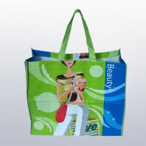 Non-Woven Shopping Bag (CXNWB-001)