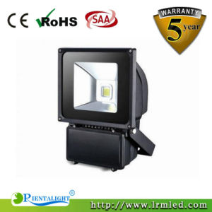 Bridgelux Outdoor Waterproof IP65 Meanwell AC90-305V 100W LED Flood Fixture pictures & photos