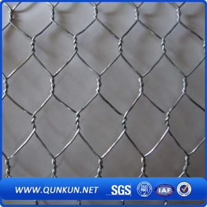 Hexagonal Metal Wire Mesh (XA-HM51) pictures & photos