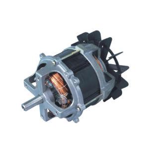 Lawn Mower Motors (LXJ008)