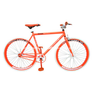 Fixed Bike (WT-2714)
