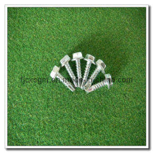 Hex Head Self-Tapping Screw Zinc Plated 4.8*32