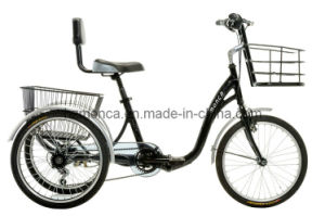 China Monca Best Electric Tricycle E Bike Bicycle Three Wheels Old Men Travel Vehicle Shimano Gear pictures & photos