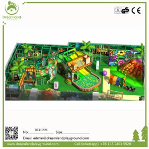 Kids Play Structure Indoor&Outdoor Playground Equipment pictures & photos