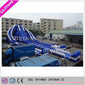 Giant Hippo Inflatable Water Slide for Sale pictures & photos