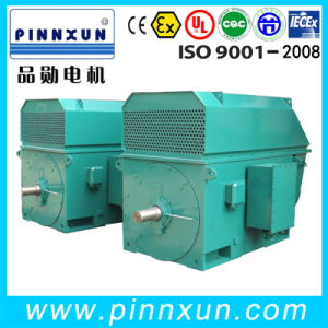 1000kw Totally Enclosed Squirrel Cage Motor pictures & photos