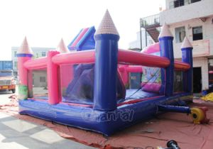 Aladdin Jasmine Inflatable Playground Chob107 pictures & photos
