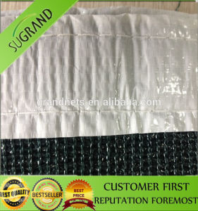 Green Shade Netting Lowest Price Shading Net pictures & photos