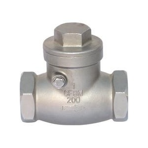 Stainless Steel Threaded End Swing Check Valve pictures & photos