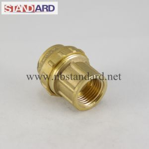Straight Coupling Brass PE Fitting pictures & photos