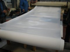 White PTFE Sheet, Teflon Sheet for Industrial Seal pictures & photos