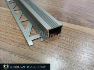 Aluminum Skirting Trim with Champagne Color pictures & photos