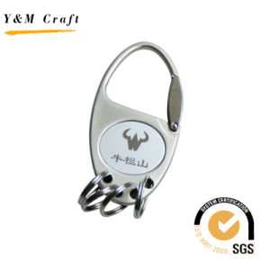 Customized Oval Hot Sale Metal Key Ring Keychain (Y02339) pictures & photos
