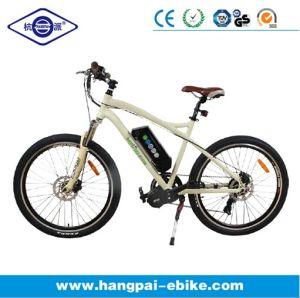 Electronic Lithium Lon Battery Central Motor Mountain Electric Bike (HP-E003)