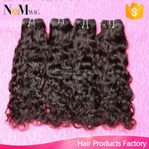 Cheap Water Wave Unprocessed Virgin Hair Brazilian Peruvian Malaysian Indian Hair Cambodian Water Curly Hair pictures & photos